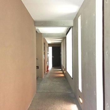 共用部の廊下。一番奥が201号室です。※写真は前回募集時のものです