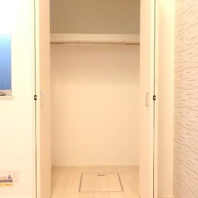 洋室のクローゼット。奥行きあります※別部屋の写真です