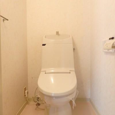 トイレはキレイなのでそのまま使用します