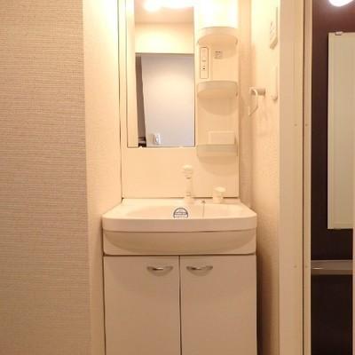 独立洗面台。洗濯機置き場も同じ空間に