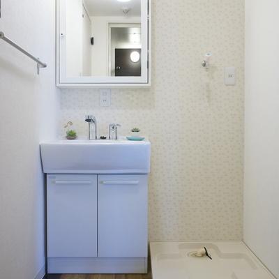 洗面台のミラーは収納にもなっているお利口さん
