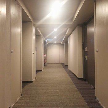 共用廊下もクールです