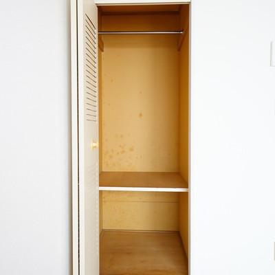 収納はミニマム、一人暮らしサイズです。※画像は別室です