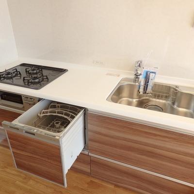 システムキッチンは食洗機&浄水器付きです