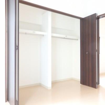 洋室の収納は大きめ!※別部屋の写真です