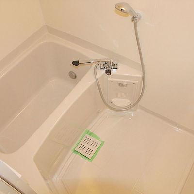 シャワーヘッドに注目!