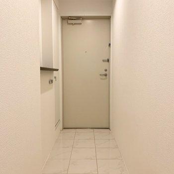 さて、室内の最後は玄関を。框がなくタタキとフラットな玄関です。