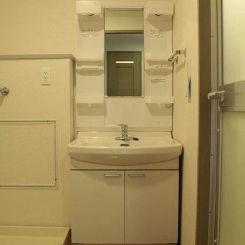 一般的な洗面台です※写真は4階の同間取り別部屋のものです