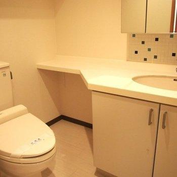 奥のスペースに、猫用トイレも置けます※写真は6階の反転間取り別部屋のものです