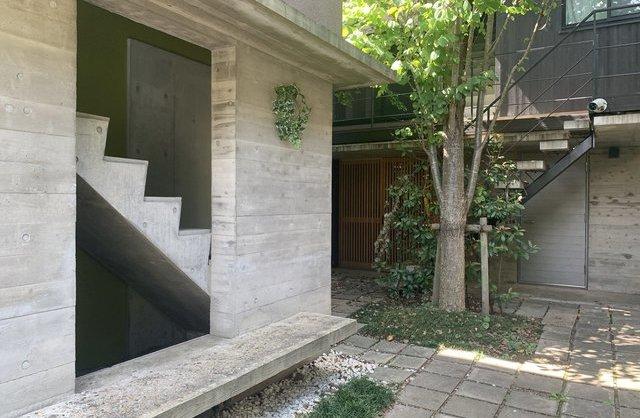 打ちっ放しに木漏れ日の家の内観