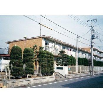 グリーンコーポ金田3号棟