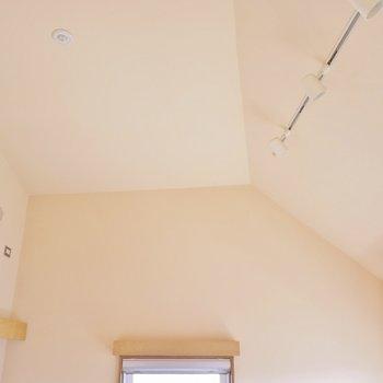 高めの天井に間接照明を装備! ※写真は304号