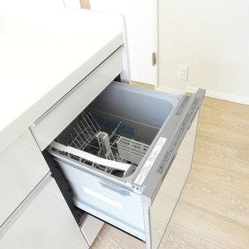 ビルトイン食洗機つき!