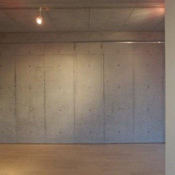 コンクリートの壁が効いてます