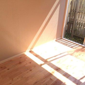 見てください、このあたたかな光…1階とは思えませんね!※写真は前回募集時のものです
