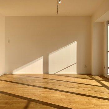 天井にはライティングレールが標準装備されてますね