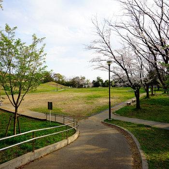 大きな公園♪