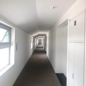 長々とした廊下ですが、 エレベーターはすぐ右にあります。