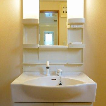 洗面台は普通タイプ。