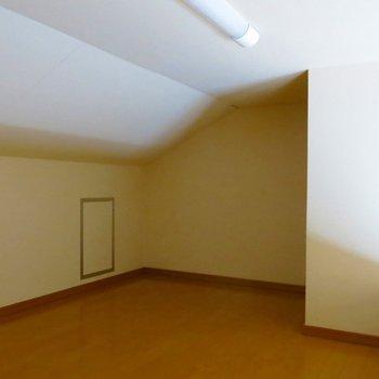 隠れ家ちっく!収納にもつかえちゃいます。