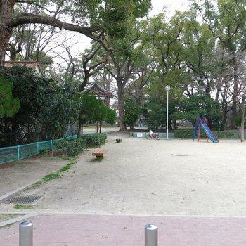 徒歩10秒で公園です。