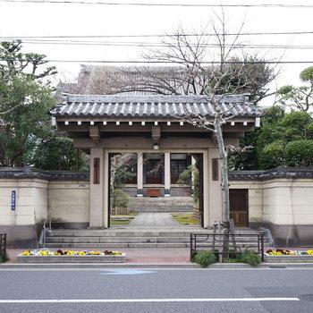 道路を挟んで立派な神社あります♪