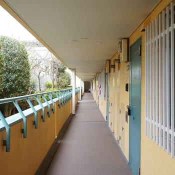 黄色とグリーンのきれいな共有廊下 ※前回募集時の写真です