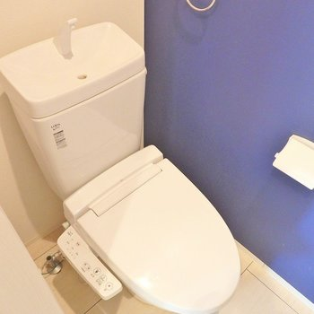 トイレはガラッと雰囲気が変わって深い青。