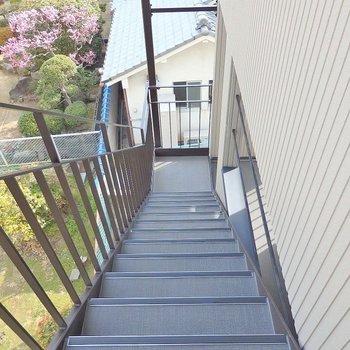 この階段を3階まで!!