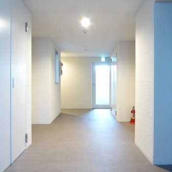 共用廊下も清潔感たっぷり