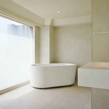 そしてこのバスルーム