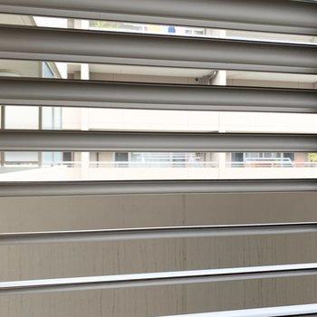 共用部側の窓はしっかり防犯のシャッターが付いています。
