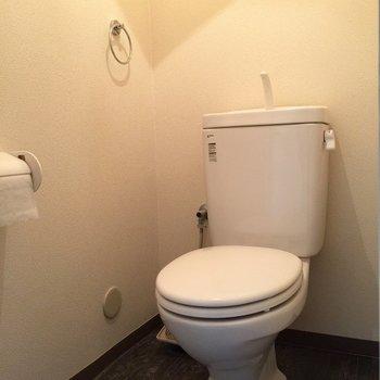 トイレもね普通です(写真は101号室)