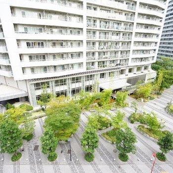 眺望は緑の爽やかな借景が♪※写真は7階の同間取り別部屋のものです。