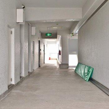 しっかり管理されているのが分かる廊下