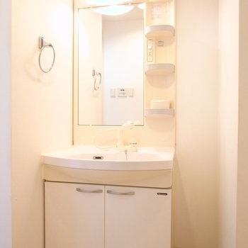 正面に洗面台です。となりにタオルの収納を置けそう。