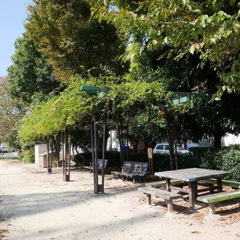 目の前にある公園は穏やかな雰囲気