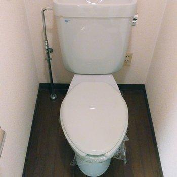ブルーがかった小さめトイレ