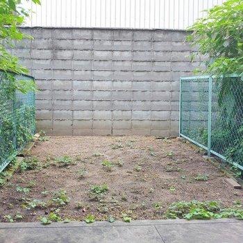 お庭~~! 何を植えようかなあ
