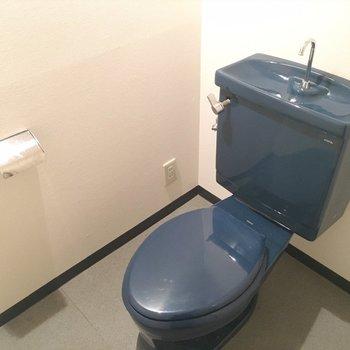洗面台とおそろカラーのトイレ。