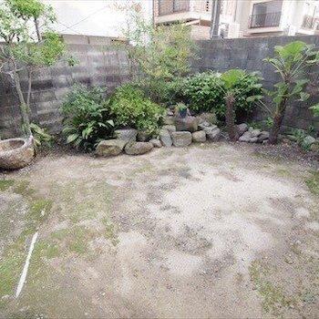 京都らしいお庭。