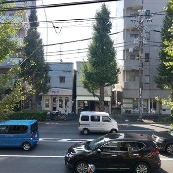 眺望は緑のある大通り