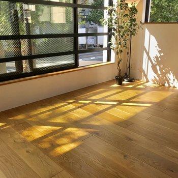 優しい光が無垢床を包み込みます