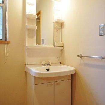洗面台はちょいとコンパクト