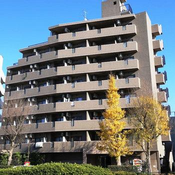 ロイヤルパレス高円寺