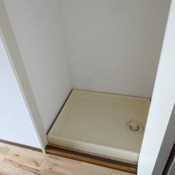 洗濯パンはキッチン横でした。折れ戸で隠せるタイプ。大きめ入りそうです。