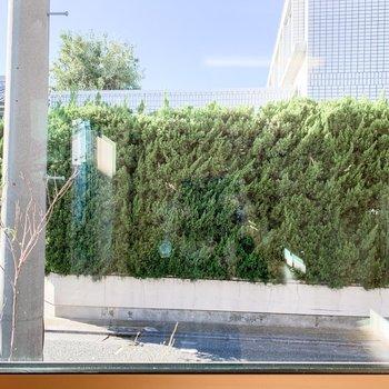 間取り図左側の窓からは爽やかな緑が覗きます。