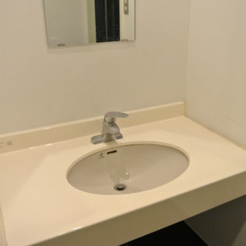 洗面台があり※写真は別部屋