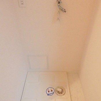 洗濯機ももちろん室内に置けちゃいます。