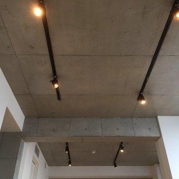 天井を見上げるとライティングレール。※写真は6階の同間取り別部屋です。